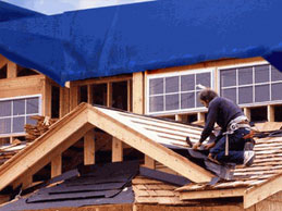Tarps Roof